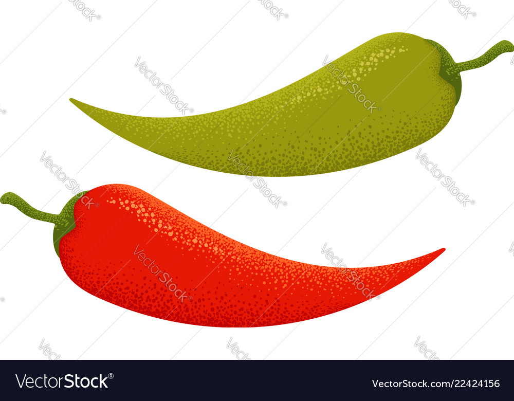 Chilli and jalapeno peppers