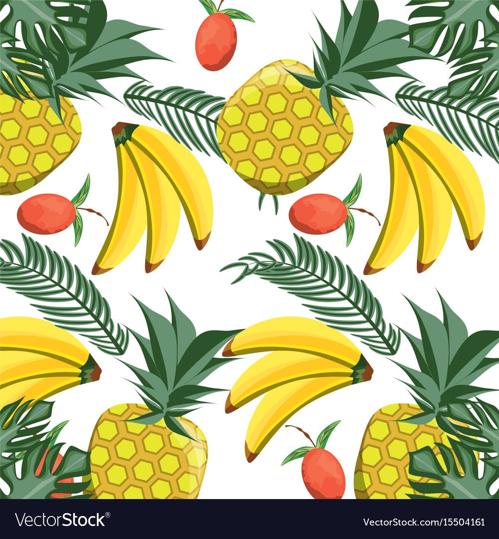 Isolated fruits background