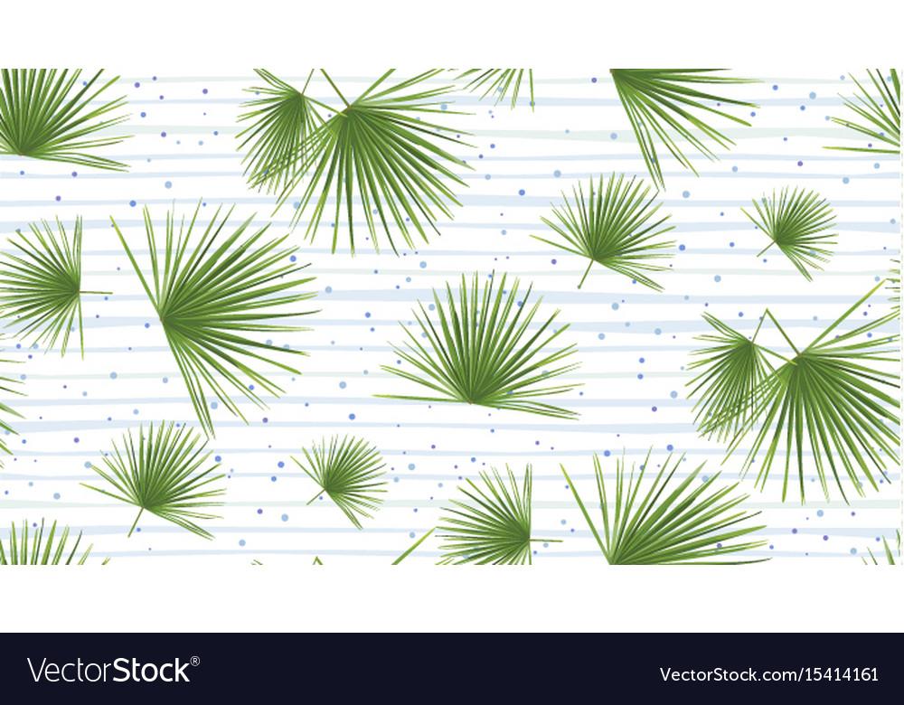 Tropical fan palm leaves jungle green leaf vector image