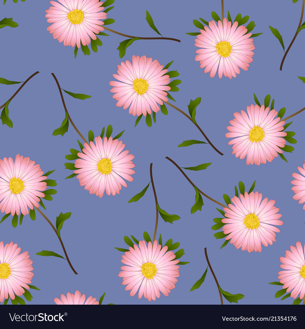 Pink aster daisy on purple background