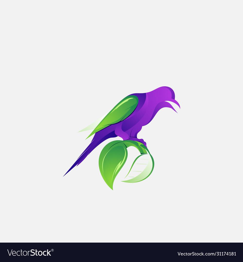 Colorful logo design animal bird