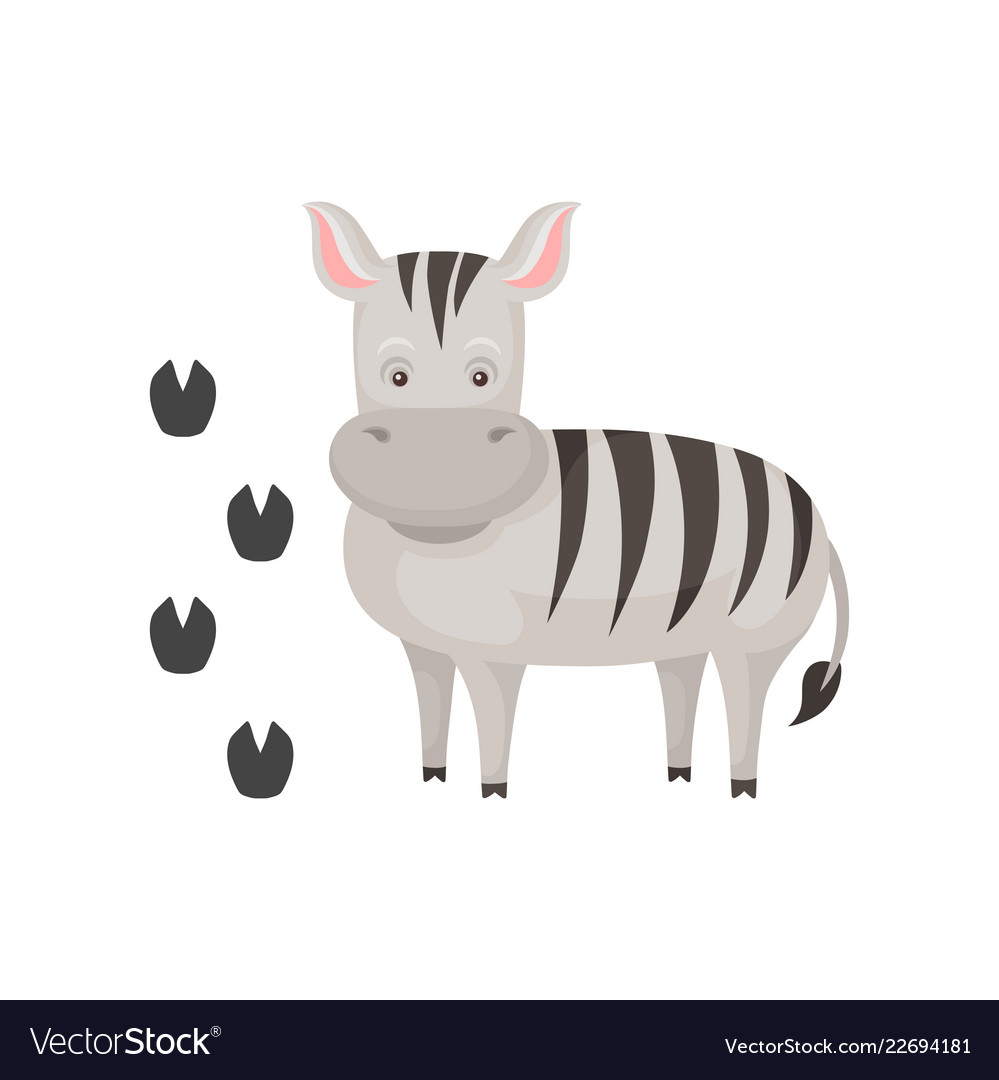 Cute zebra and her footprints cartoon character