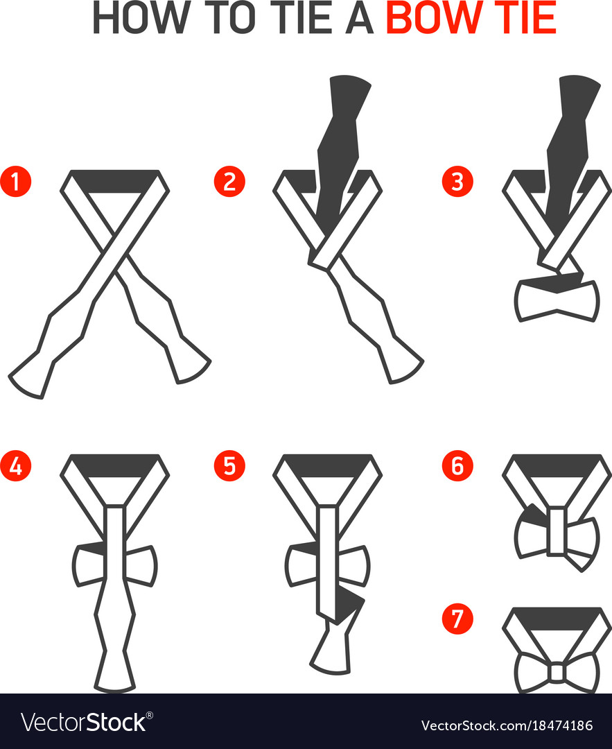 How To Tie A Bow Tie Instructions Royalty Free Vector Image