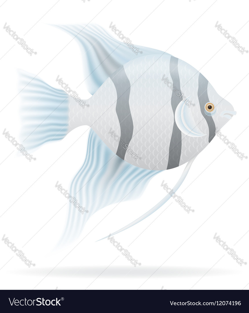 Aquarium fish 03 vector image