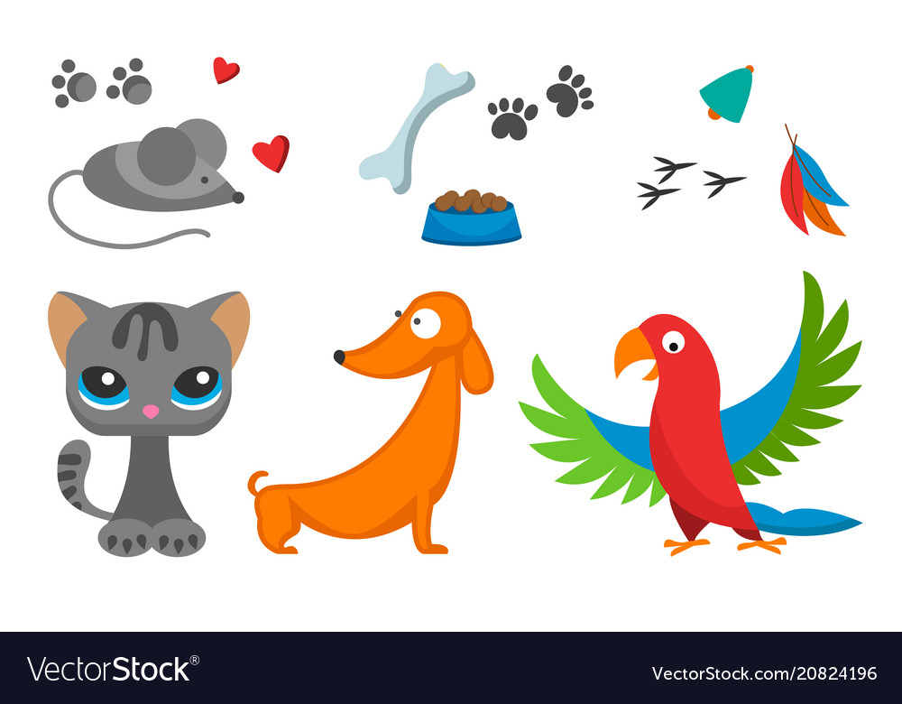Cat and mouse cute kitty pet dog parrot cartoon