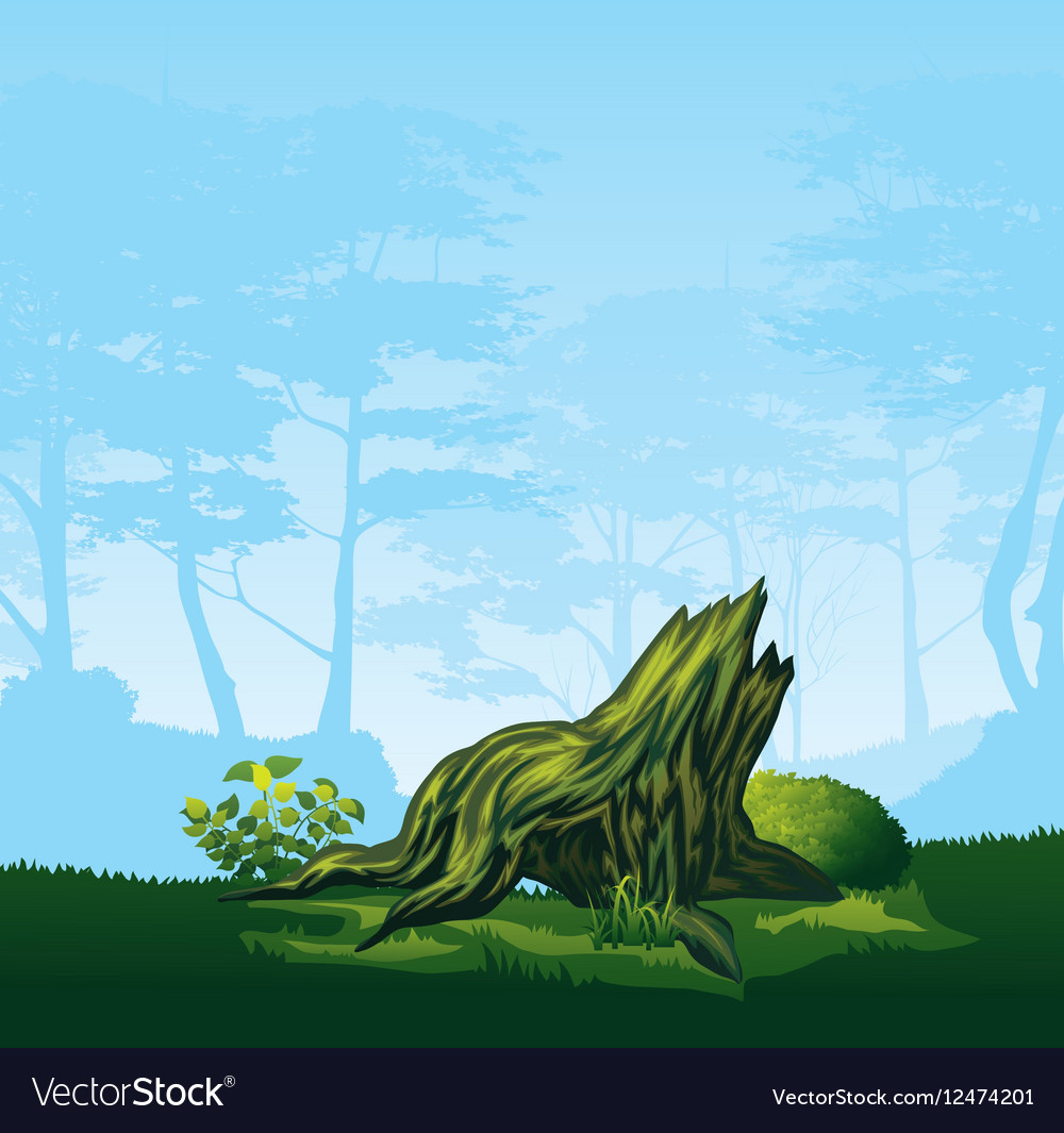Stump with a curved crown vector image