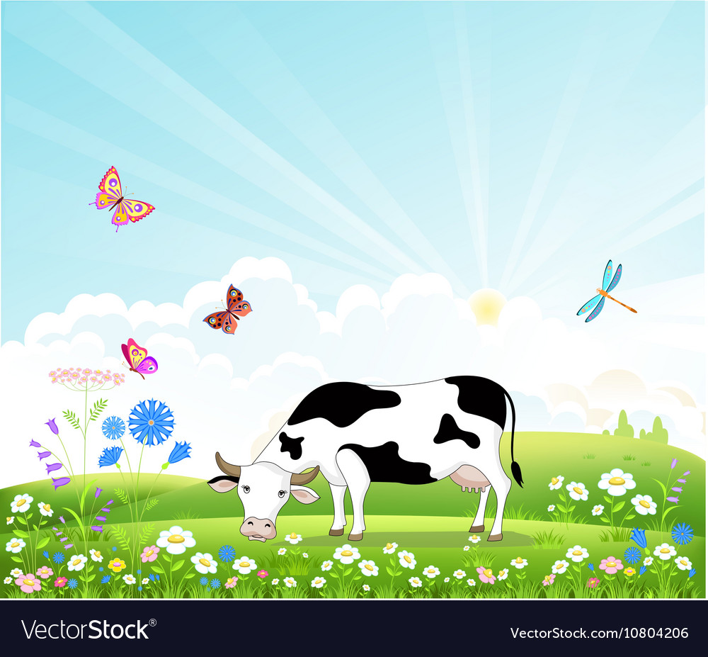 Cow on a summer landscape