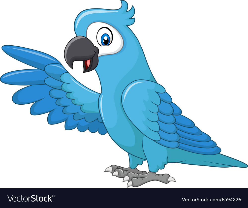 Cartoon funny blue macaw presenting isolated