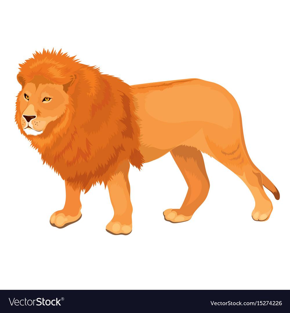 lion walking royalty free vector image vectorstock