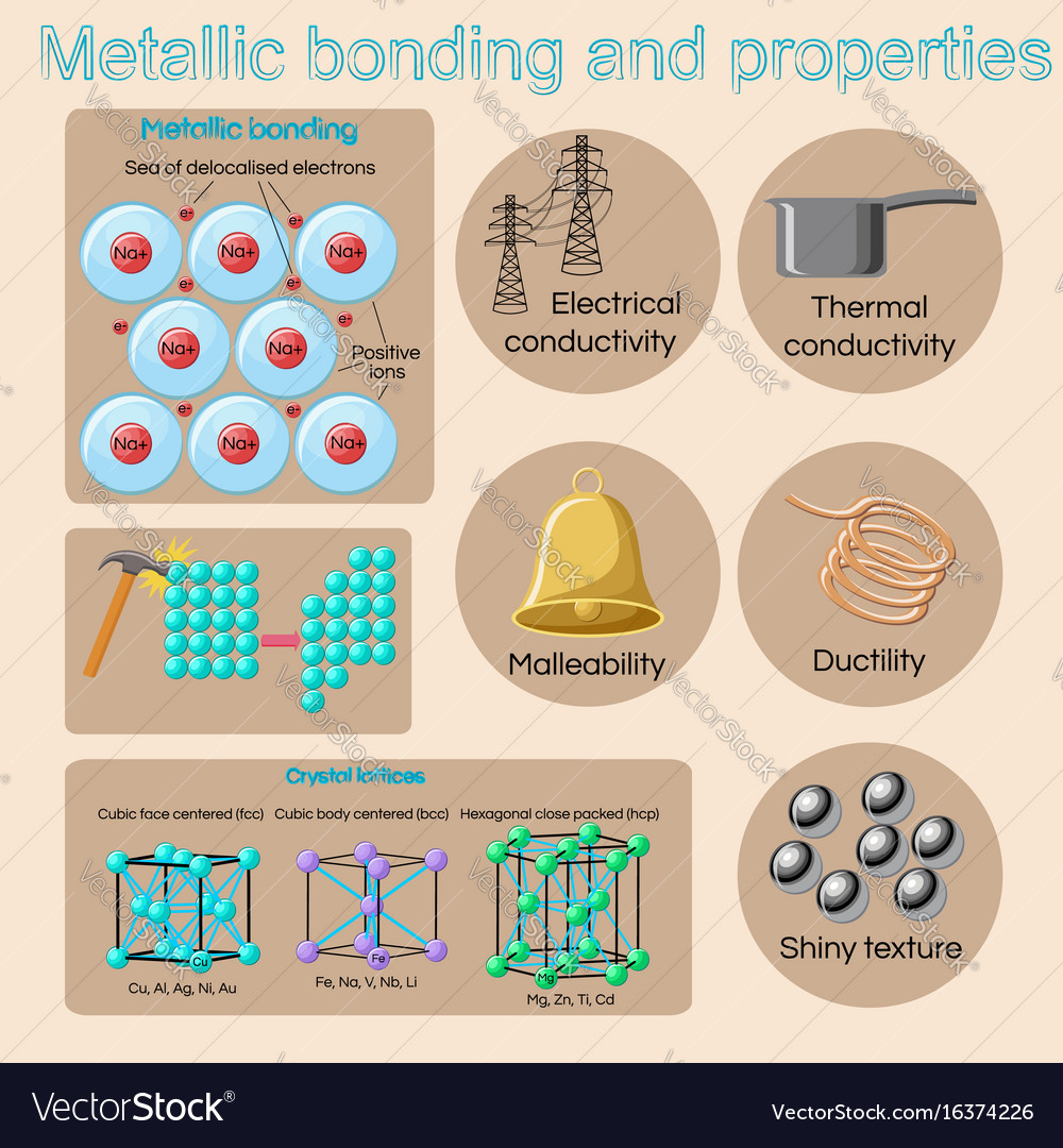 Metallic bonding and basic physical properties of vector image