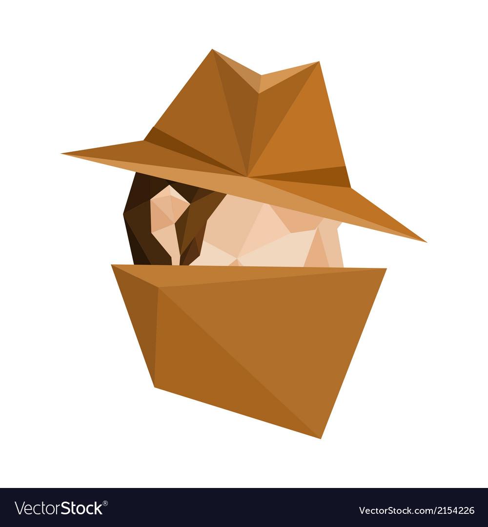 Polygonal spy