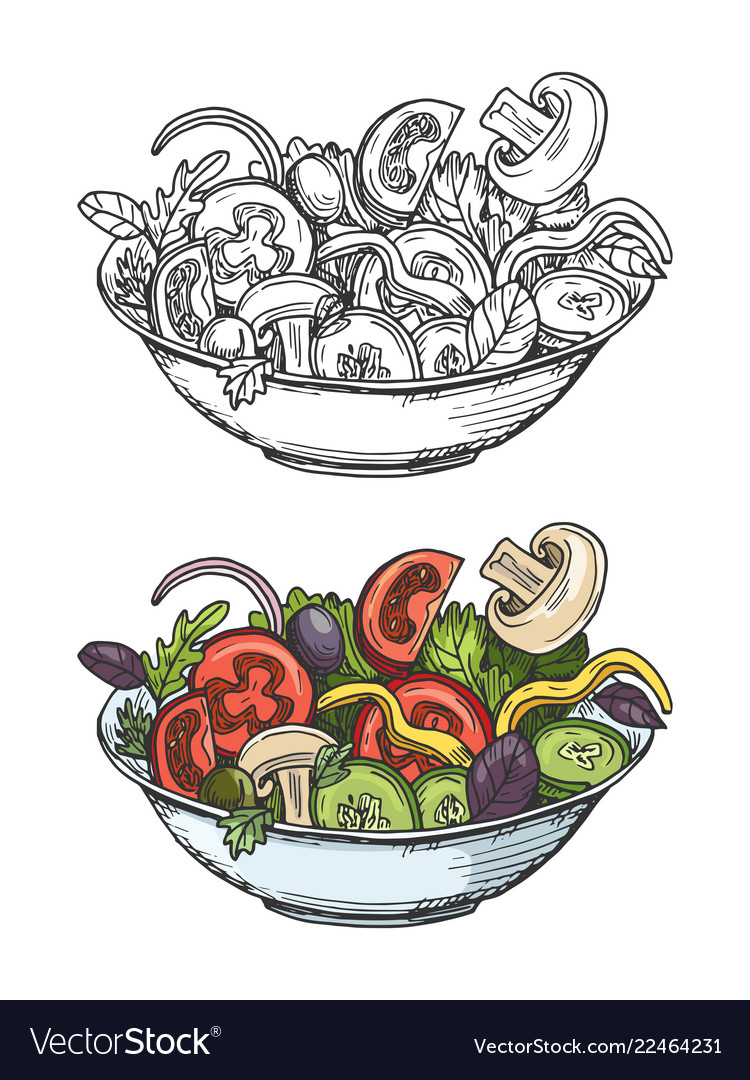 Big bowl green salad with tomatoes cucumbers vector