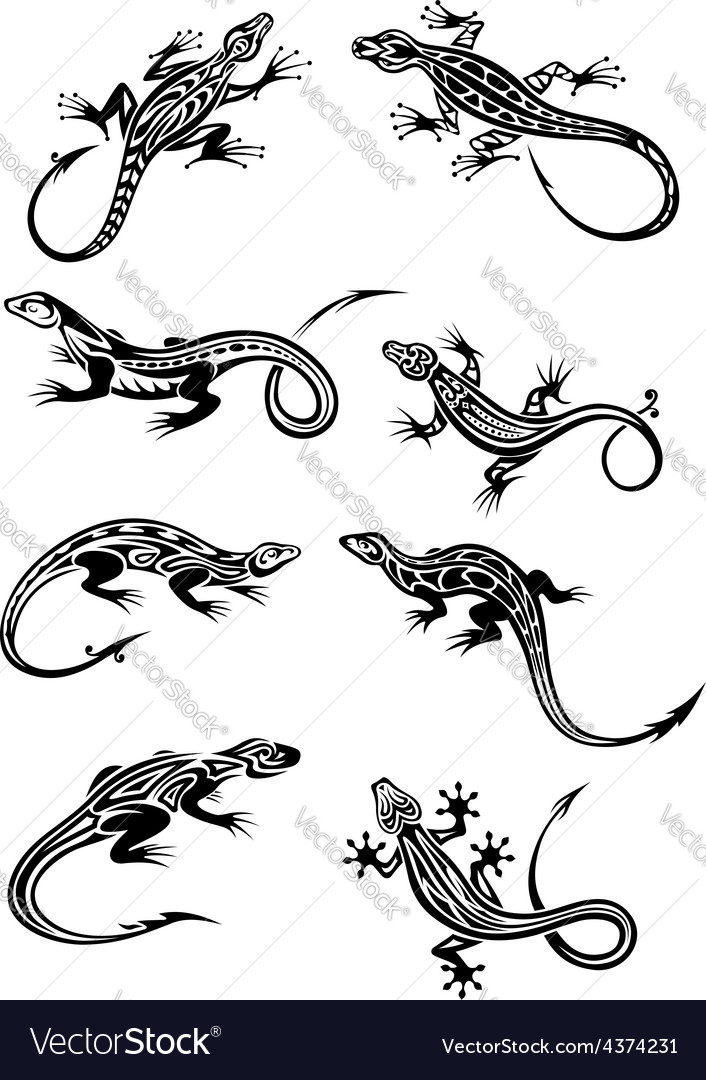 Lizard tattoos with tribal ornaments vector image