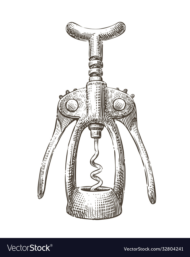Hand drawn old wine corkscrew sketch drink