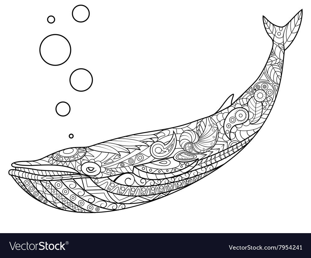 Whale Coloring Book For Adults