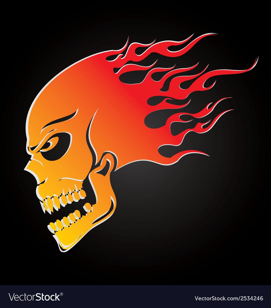Skull Fire vector image