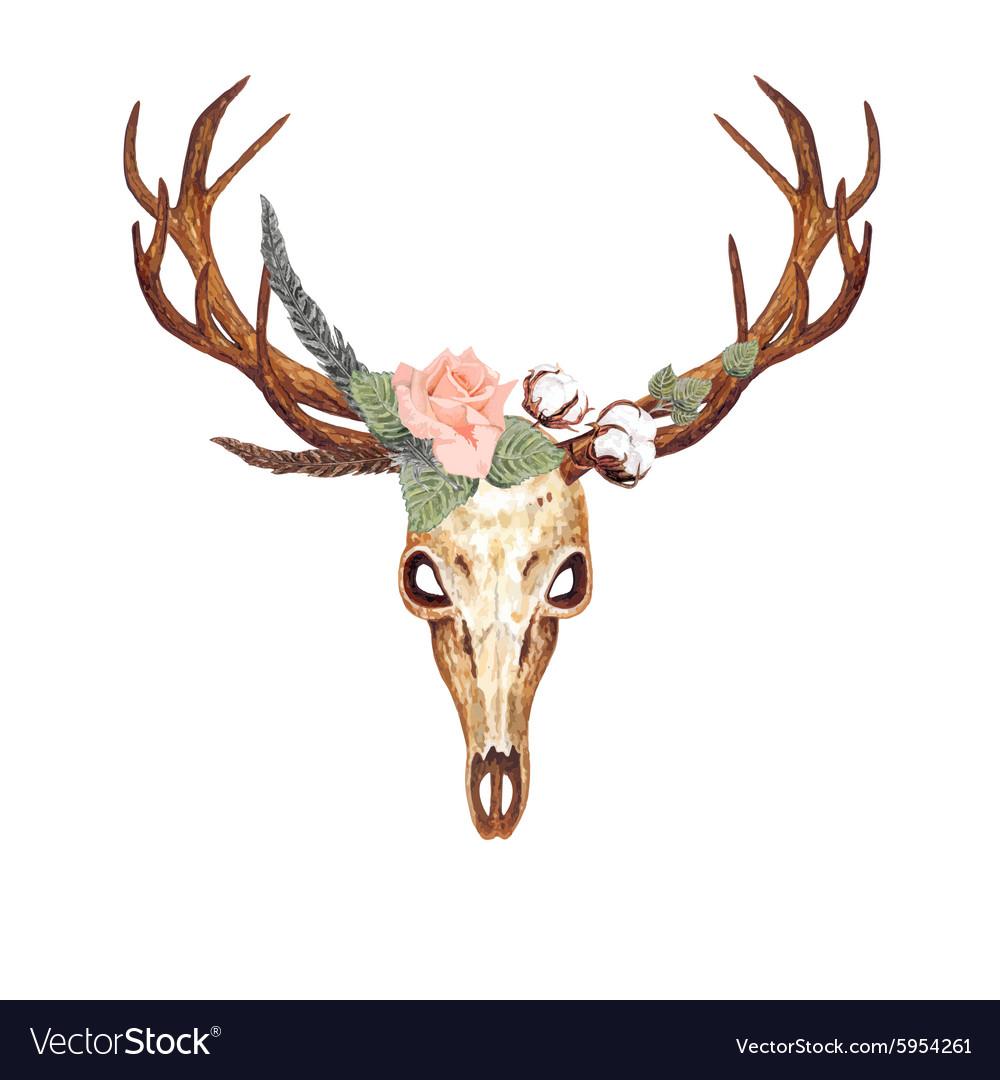 Deer Skull Rose vector image