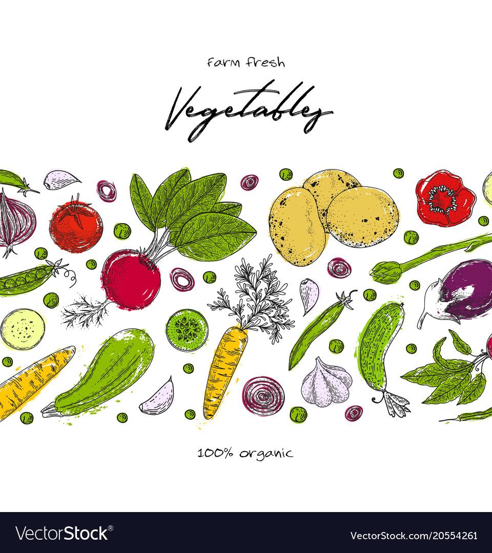 organic food design template fresh vegetables vector image