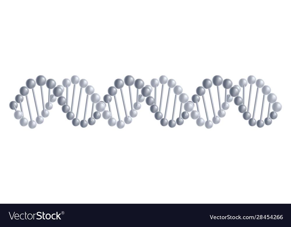 Dna molecules structure