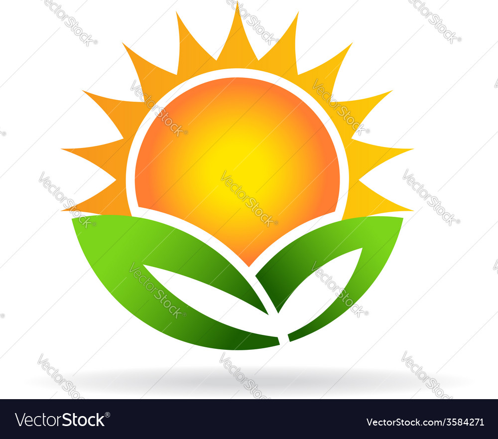 Sun eco plant image Concept of ecology green