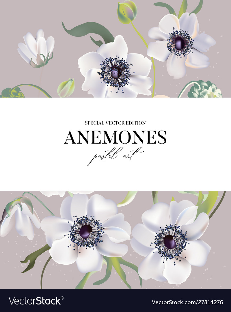 Wedding anemones floral pastel realisitic pattern