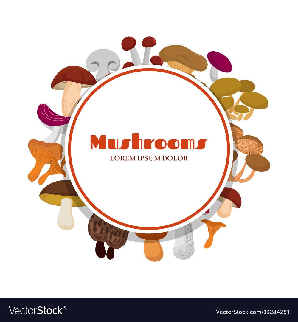 Cartoon mushrooms round banner design