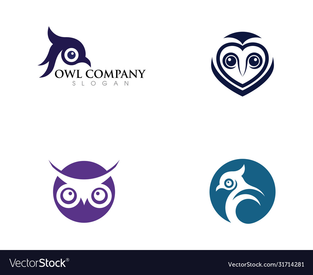 Owl bird logo template