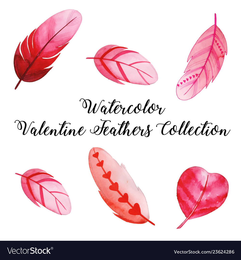 Watercolor valentine feather collection
