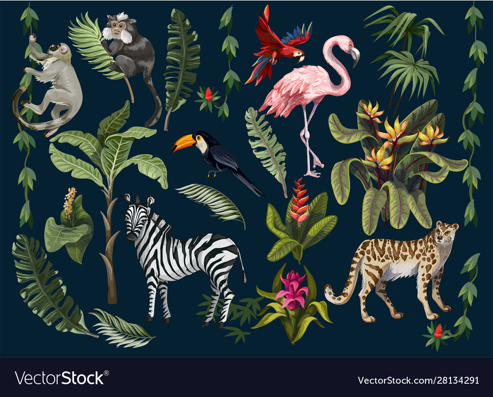 Jungle animals flowers and trees isolated
