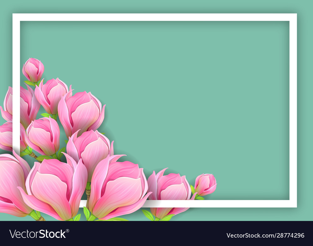 Background with magnolia for horizontal design