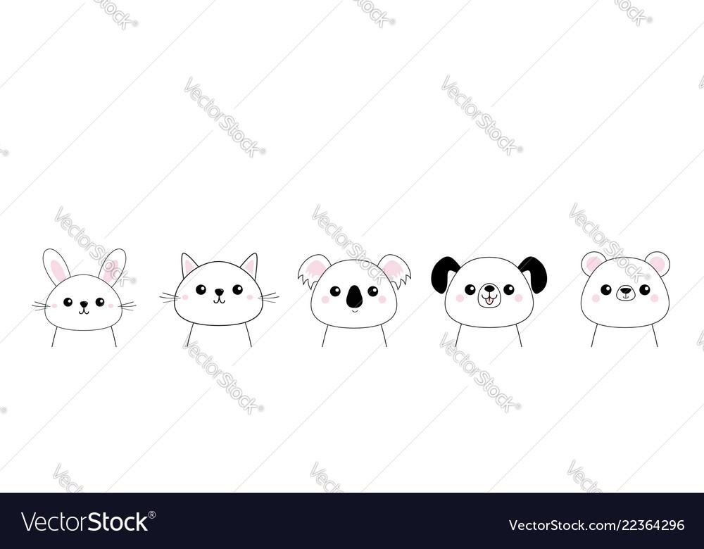 Bear dog cat kitten rabbit hare grizzly koala