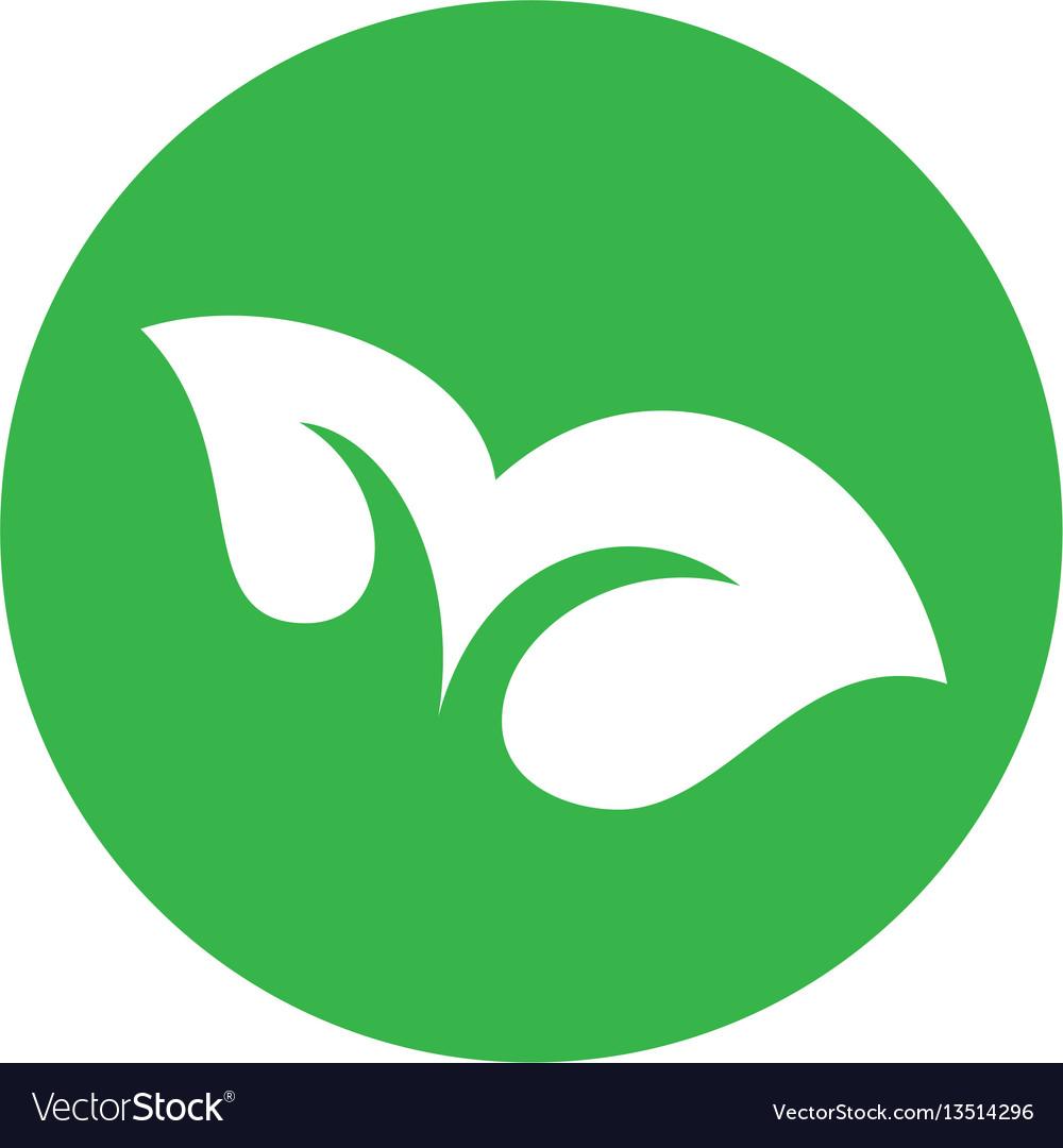 Eco green leaf concept vector image