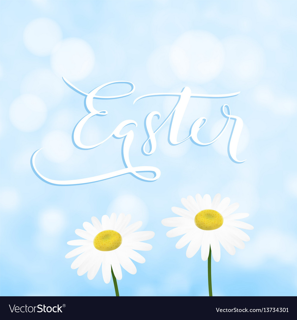 Happy easter greeting card invitation with vector image