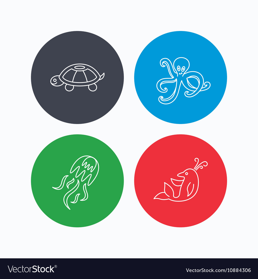 Octopus turtle and dolphin icons Jellyfish