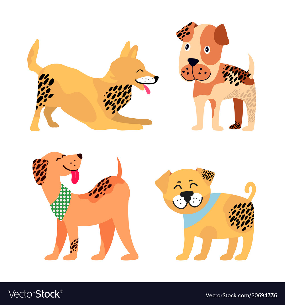 Dogs images collection on