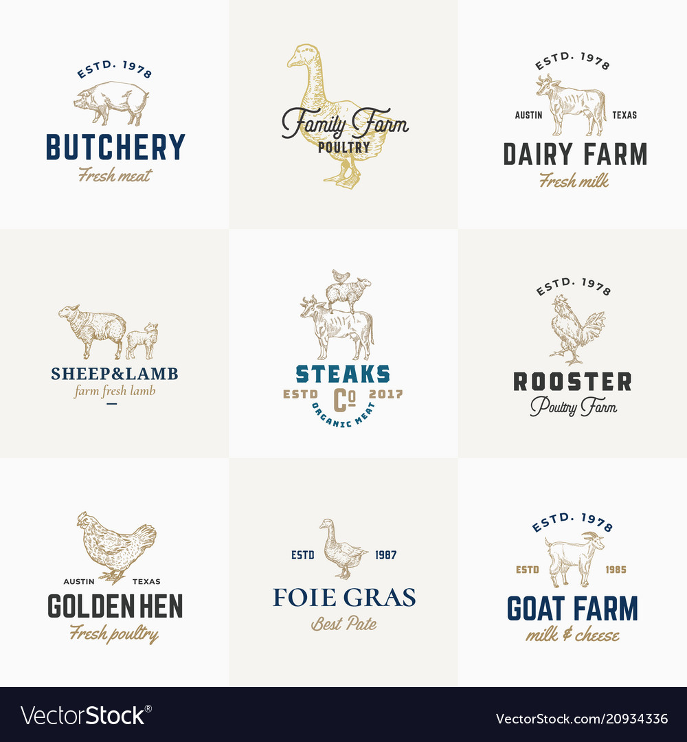 Premium quality retro cattle and poultry