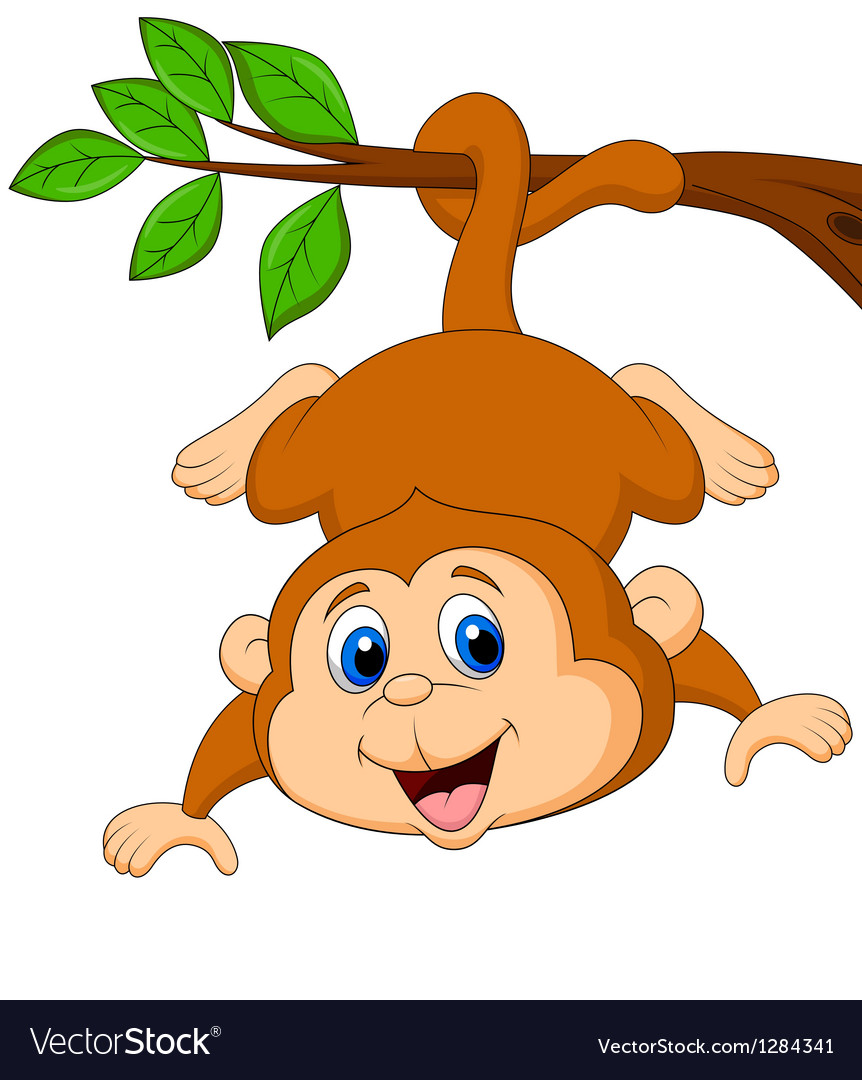monkey pictures cartoon cute monkey cartoon hanging on a tree branch vector image 8196