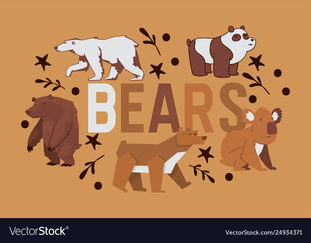 Bear wild animal character brown grizzly