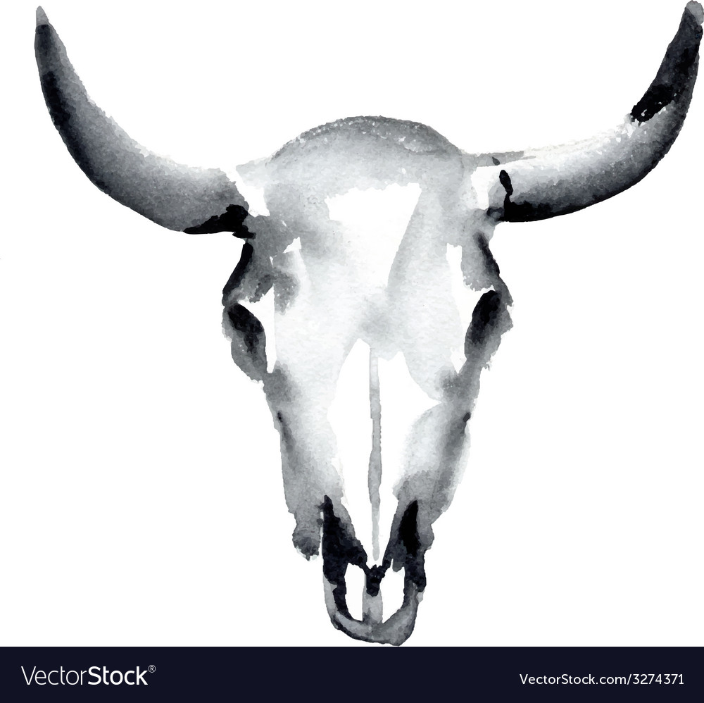 Cow skull Royalty Free Vector Image - VectorStock