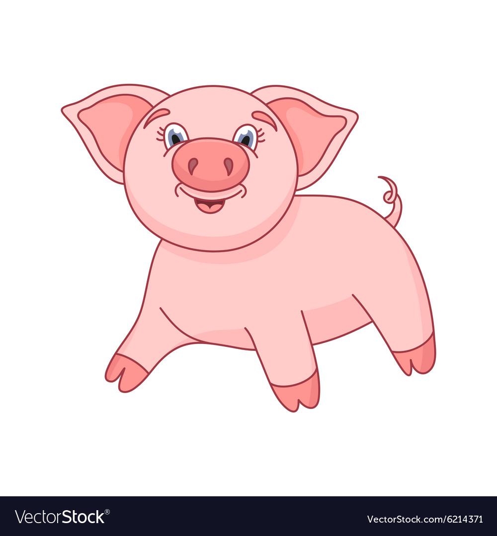 Cute pig funny piggy