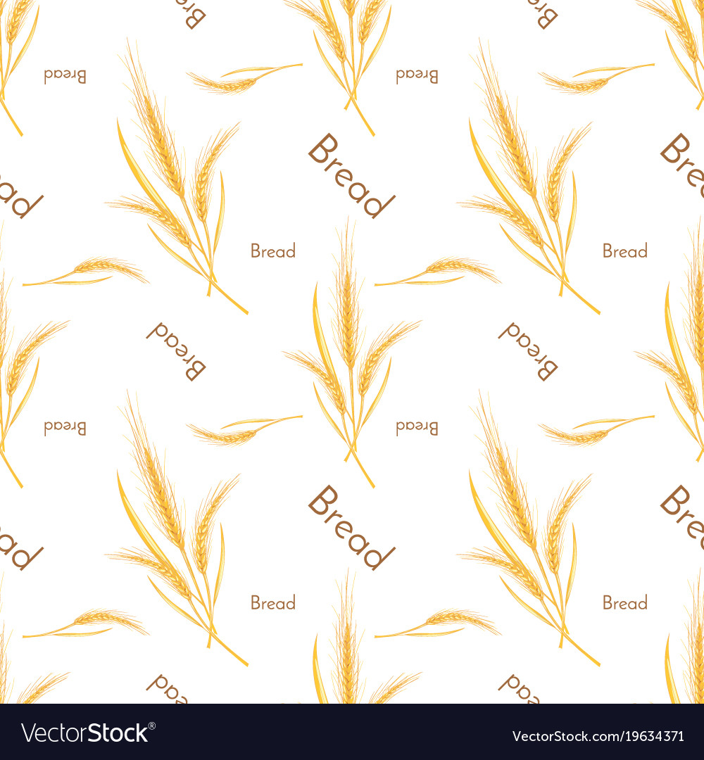 Seamless pattern of wheat and bread background vector image