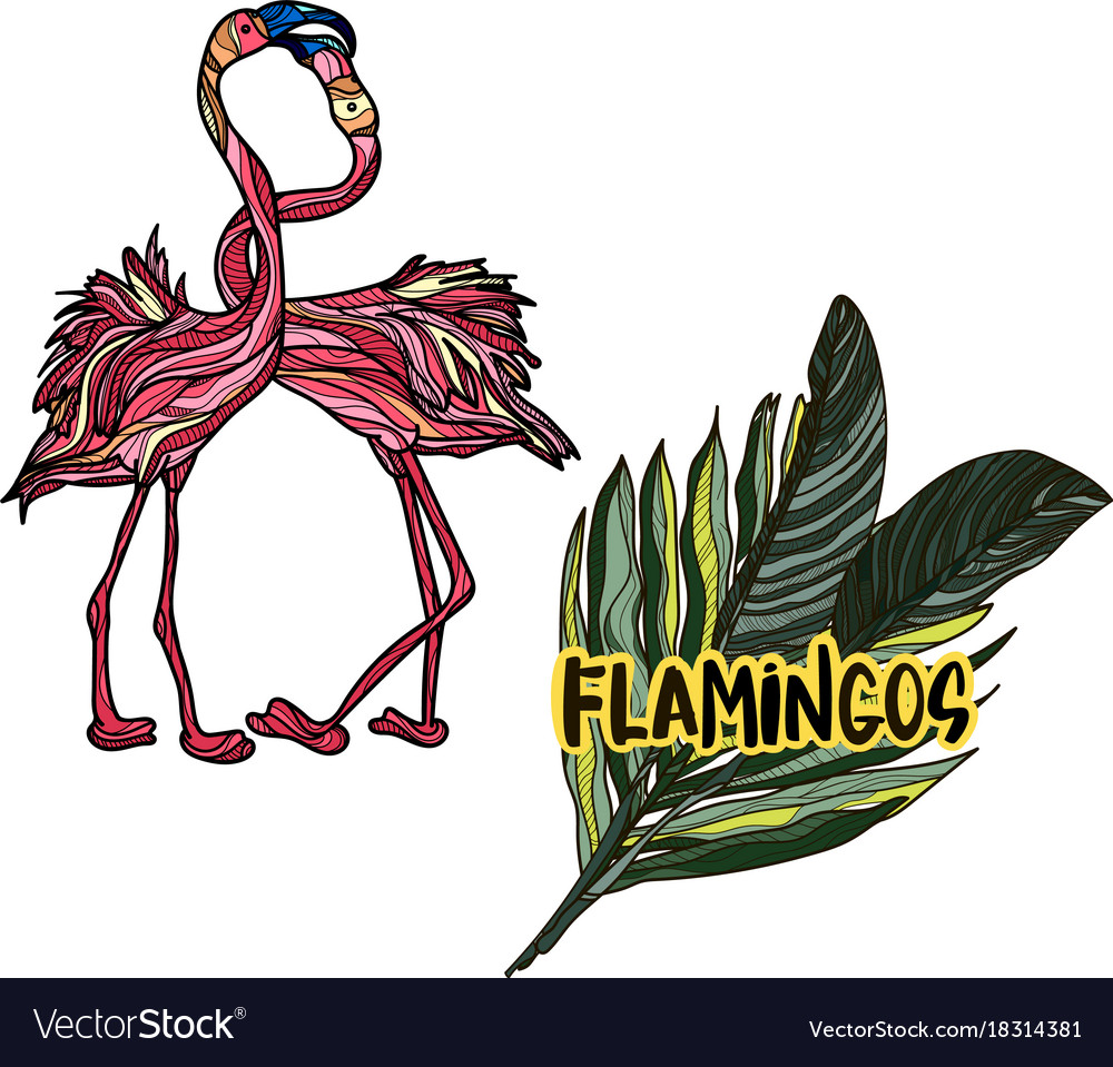 With flamingos