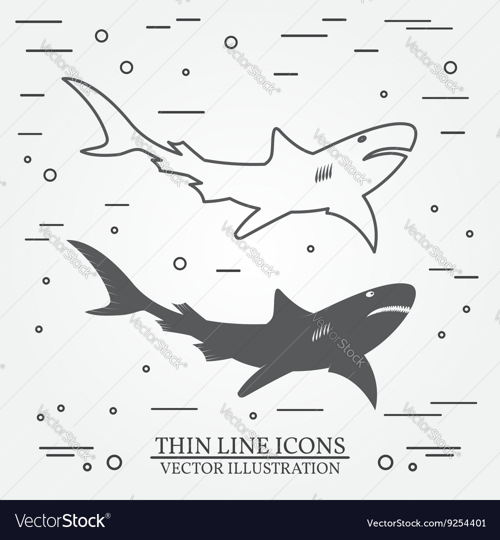 Thin line icon and silhouette shark For web design