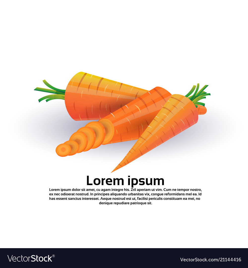 Carrot on white background healthy lifestyle or
