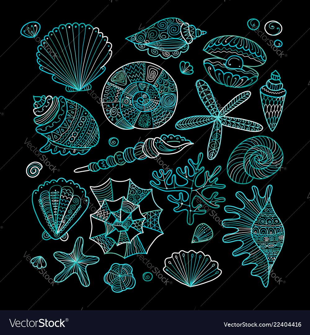 Marine collection ornate seashells for your