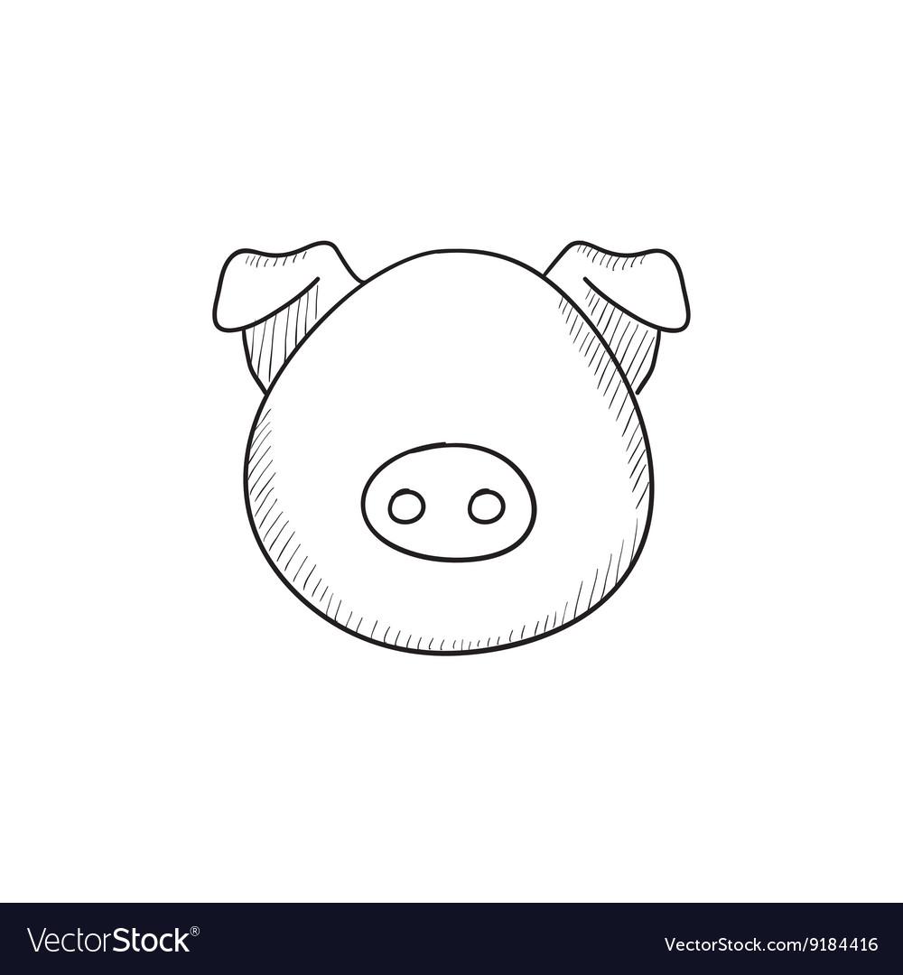 Pig head sketch icon