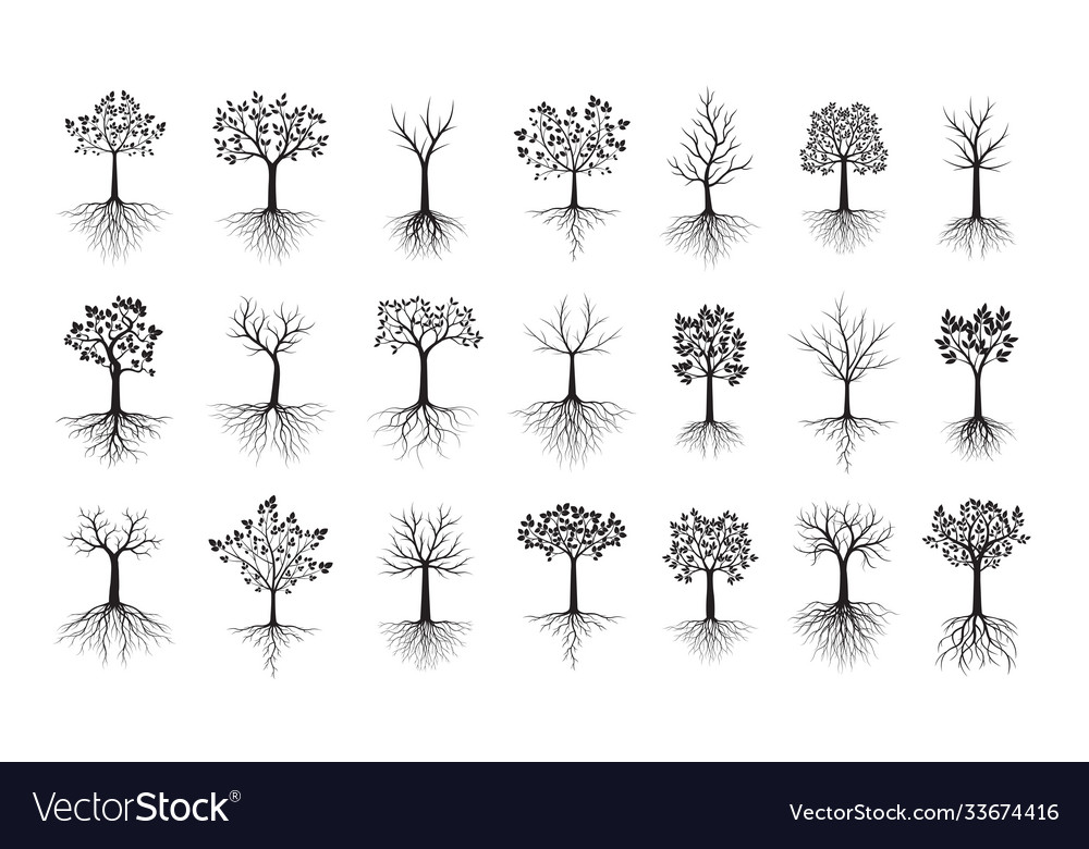 Set black trees with leaves outline