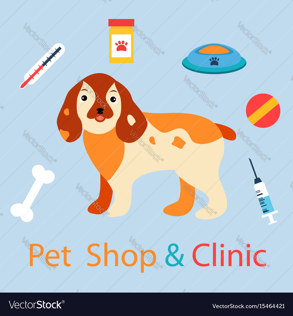 Banner with cute dog with pet medicine and stuff