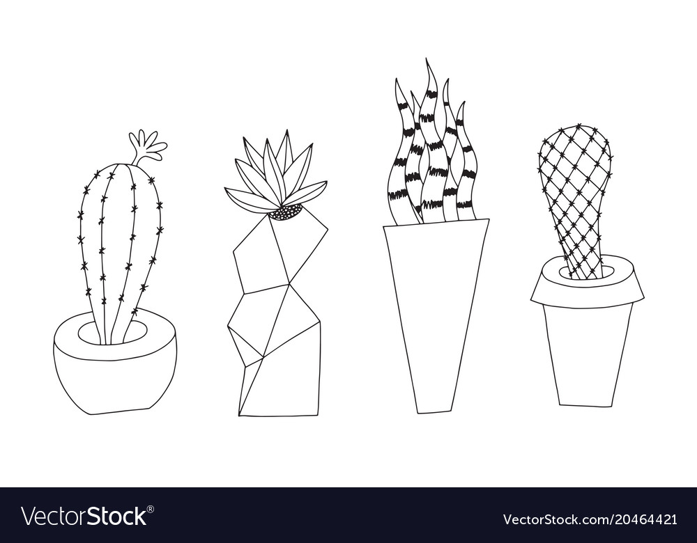 Cactus doodle style isolated on
