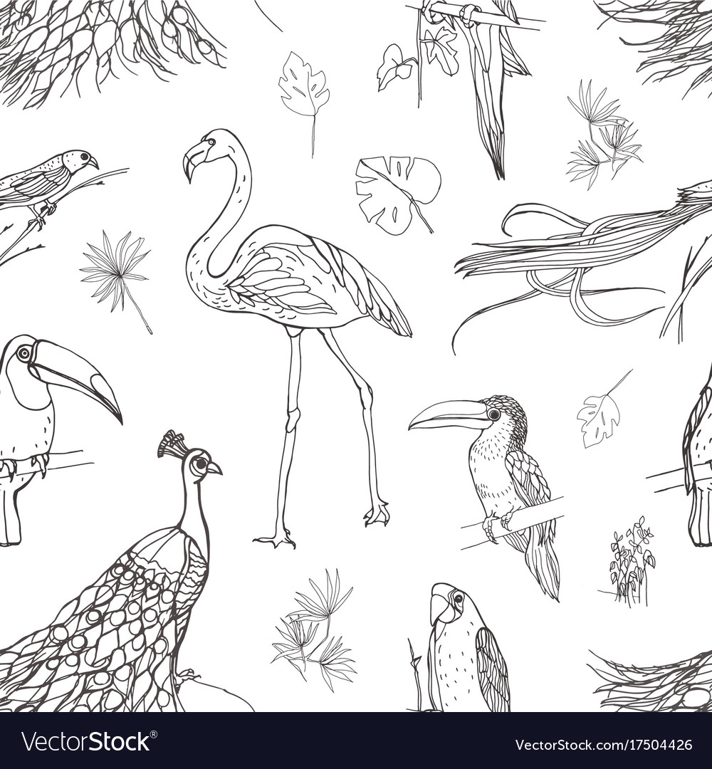 Beautiful seamless pattern with tropical birds and vector image